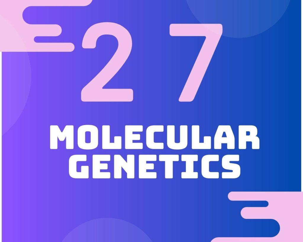 27 Molecular genetics